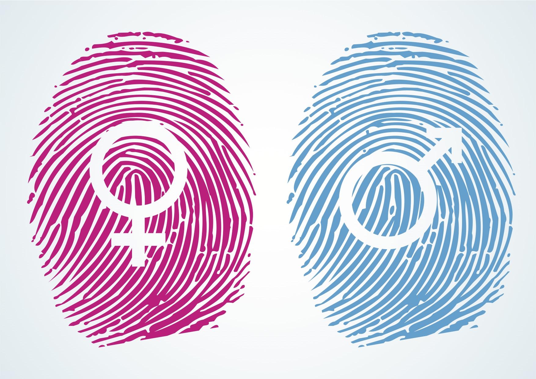 Αποτέλεσμα εικόνας για ταυτοτητα φυλου